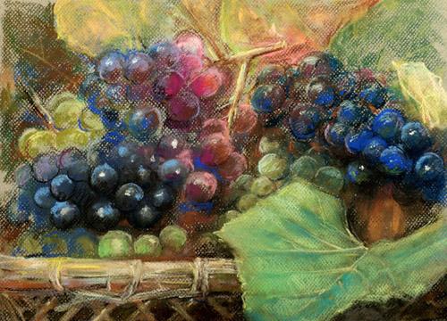ブドウの絵とブドウの害虫