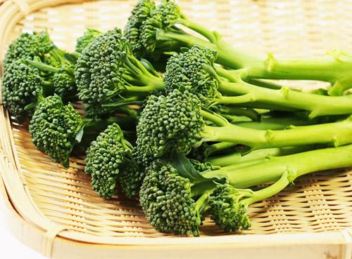 茎ブロッコリー ステムブロッコリー tender stem broccoli