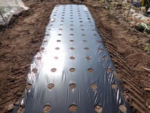 両サイドに溝を切り、土で抑えて完成。