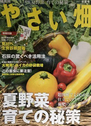 「やさい畑」初夏号発売