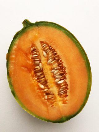 超手抜きメロン栽培